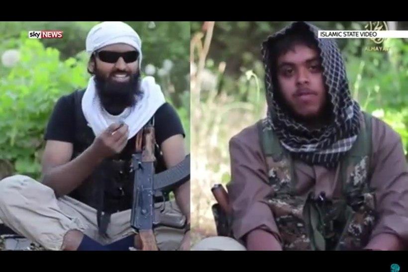 Briti droon tappis kuninganna mõrva kavandanud terroristid