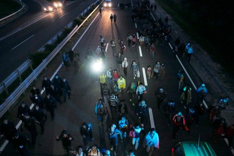 Ungari peaminister sisserändajatest: suur osa ei ole pagulased, vaid inimesed, kes tulevad head elu otsima!