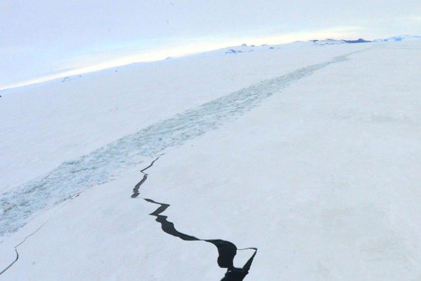 Antarktikas hukkus Kanada piloot