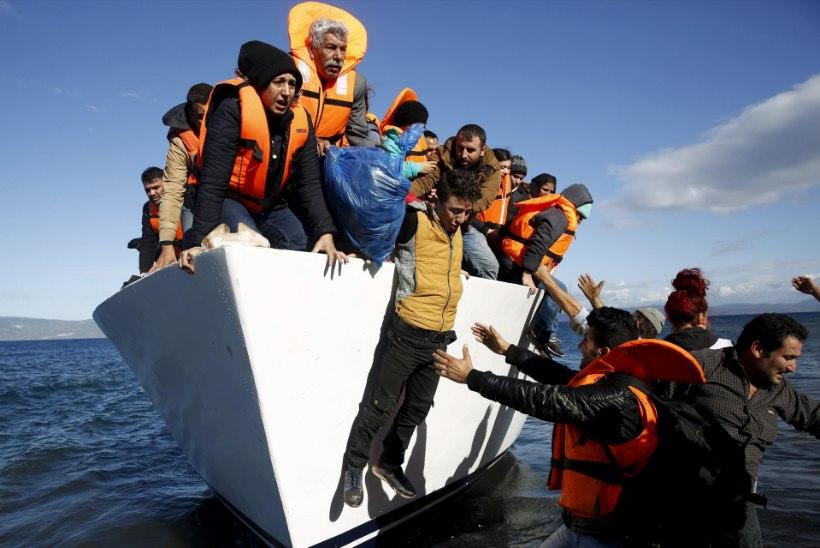 Kreekasse saabub massiliselt põgenikke