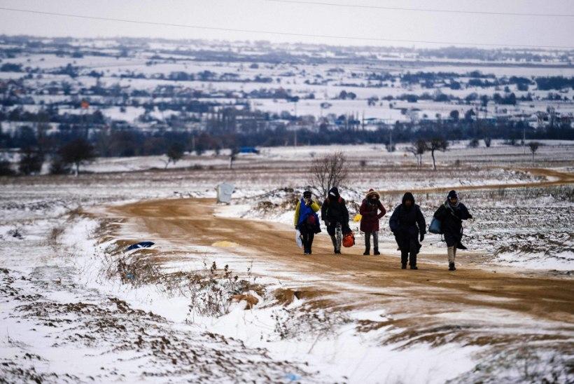 Riigikontroll: Eesti pole pagulaste vastuvõtuks piisavalt valmis