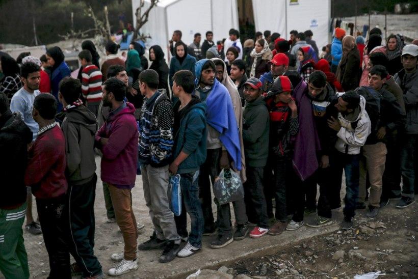 Riigikontroll: Eesti ei ole pagulaste vastu võtmiseks piisavalt valmistunud