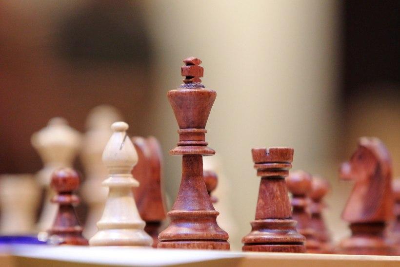 Saudi Araabia peavaimulik: islam keelab malemängu