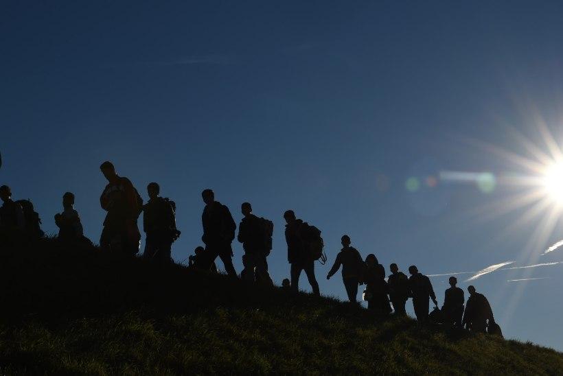 Saksamaa liidumaad konfiskeerivad pagulaste vara, sama plaanib Taani