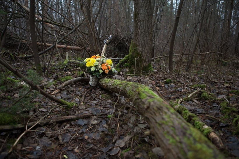 Rait Pikaro: 14aastase Darja surmajuhtumi täpsemaid asjaolusid avalikustada ei saa