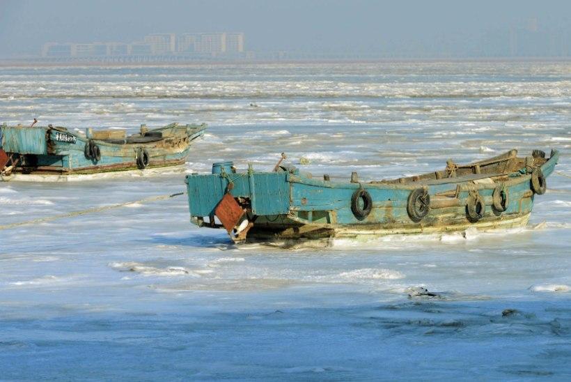 Ida-Aasia vallutas erakordne külmalaine ja suur lumi
