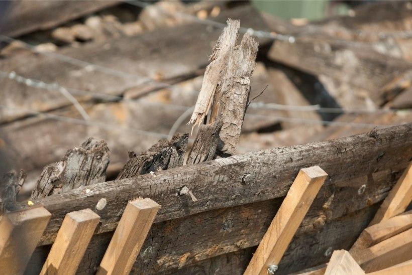 Tallinna lahest leiti laevavrakk ja mõistatuslikud savinõud