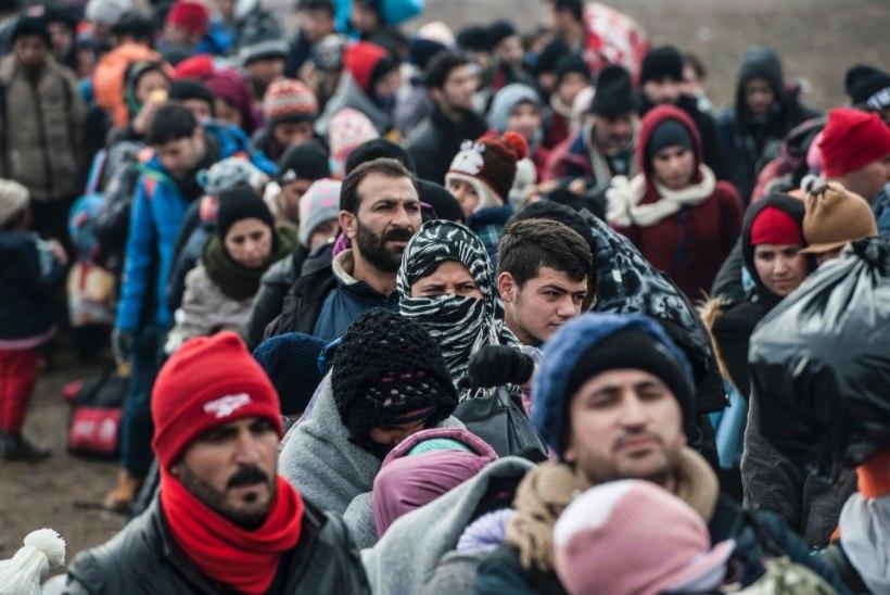 Euroopa pagulaskriisi mõju on jõudnud Eesti ettevõteteni