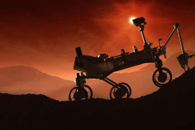 NASA Marsi-lendudeks sobivad öökulli tüüpi inimesed ja lihasööjad