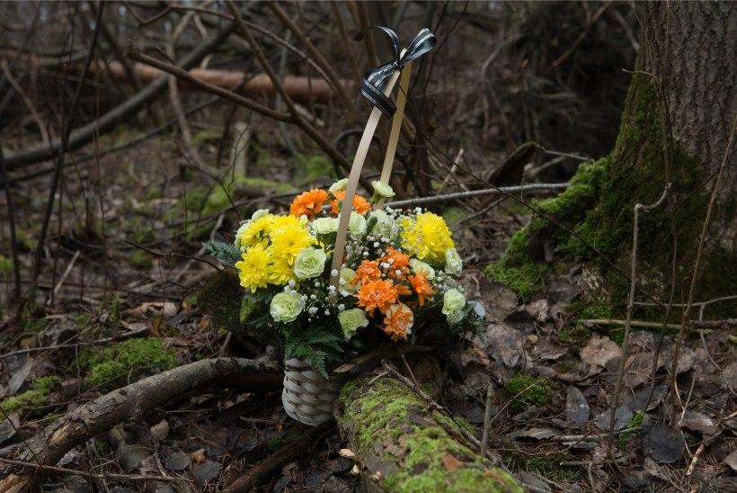 PROKURATUUR: 14aastase Darja surmaga seoses ei saa välistada kuritegu