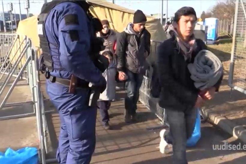 TV3 VIDEO | EESTI POLITSEI SLOVEENIAS: kui oleme pagulaste vastu head, on seda ka nemad meie vastu