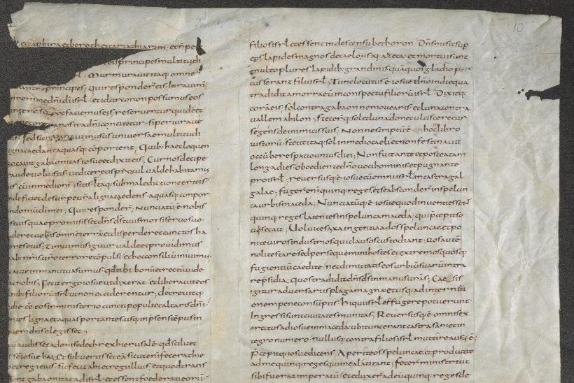 9. sajandi piiblileheküljest luubiga loetavate kääbusraamatuteni: mis haruldusi leidub Eesti tähtsamates raamatukogudes?