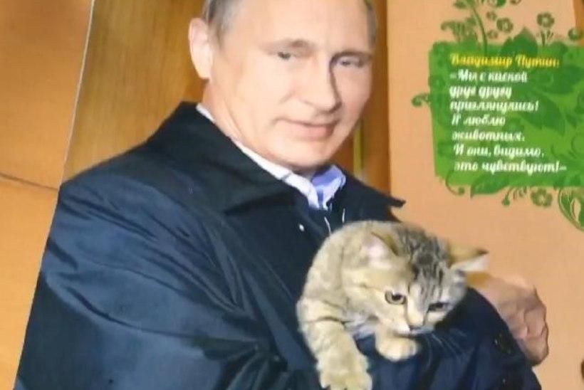 Putin kassiga, Putin lapsega, Putin kummiülikonnas ehk Ilmus Venemaa presidendi 2017. aasta kalender