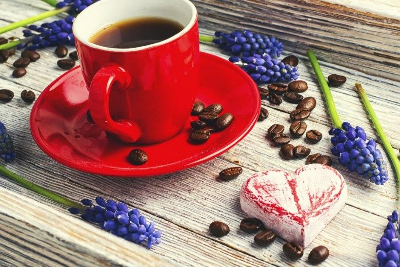 Kohvisõltuvus on tervislik?!