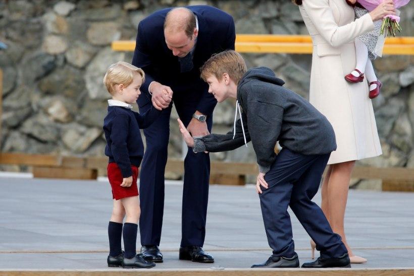 VIDEO JA FOTOD | NUNNUMEETER: Lehvitav prints George on kui kaamera ette loodud