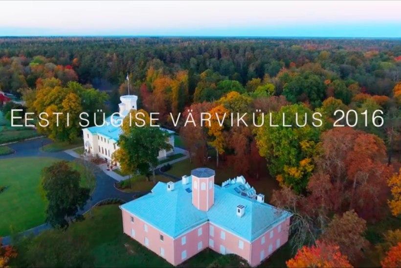 DROONIVIDEO | Naudi Eestimaa sügise ilu!