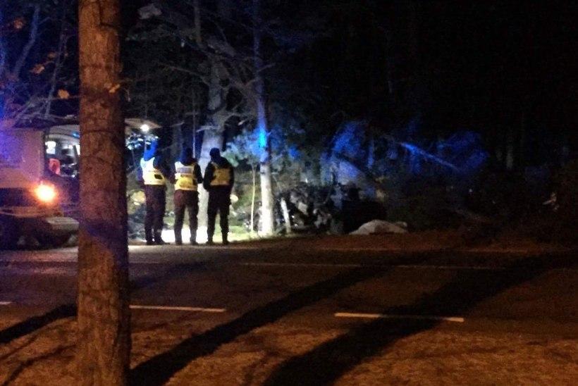 FOTOD AVARIIPAIGALT | Tallinnas hukkus liiklusõnnetuses kolm noormeest