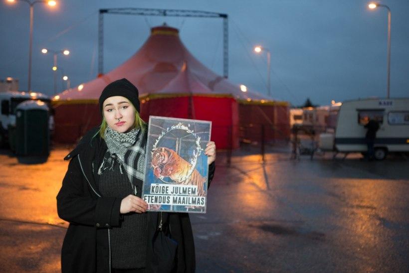 Tsirkuse projektijuht kägistas alaealist loomaõigusaktivisti