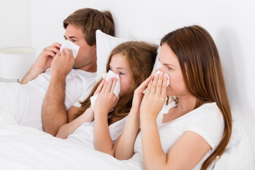 Haigestumine külmetusviirustesse kasvab tasapisi