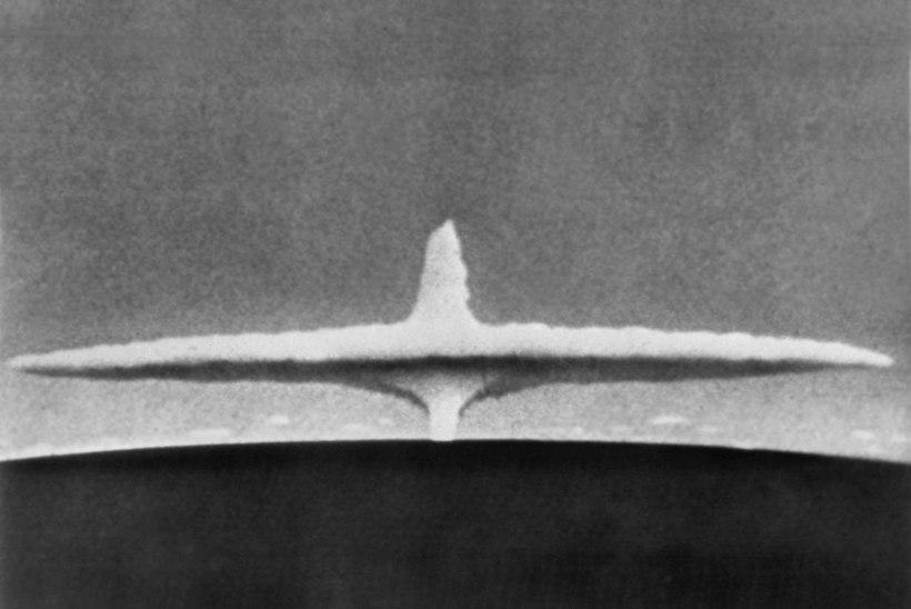 Eriüksus hävitab Põhja-Korea raketid