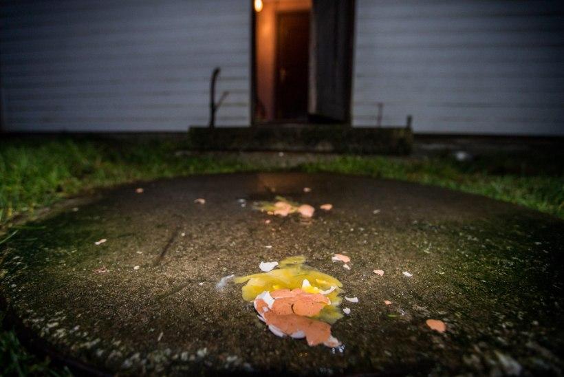 Kommi asemel pomm: halloween'itajad ründasid neile kommi andmast keeldujaid toore kanamunaga