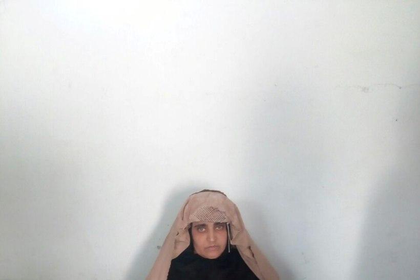 Vanglasse sattunud National Geographicu kaanetüdruk vabastati kautsjoni vastu
