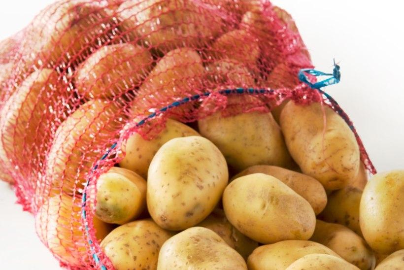 Toiduäpardused: lihaga tünni pandud kapsad ja kirvest nõudnud mannapuder