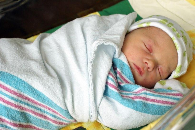 Oktoobris aidati Pelgulinna sünnitusmajas loomulikul teel ilmale kaks tuharseisus last