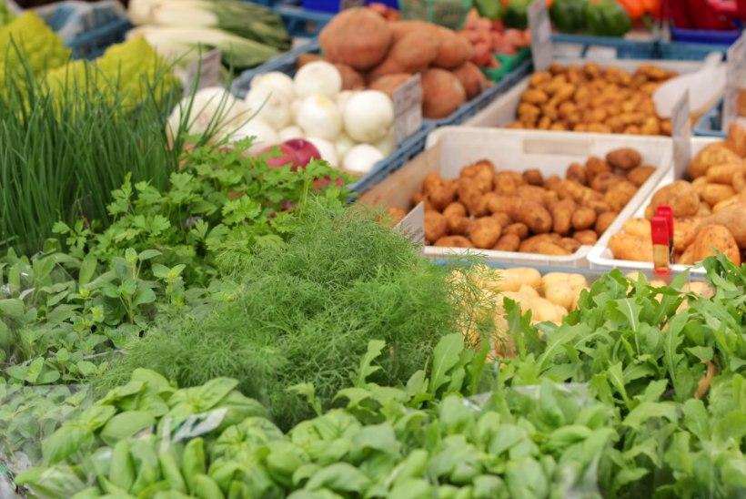Ettevaatust! Pakendatud salatit süües ähvardab sind toidumürgitus
