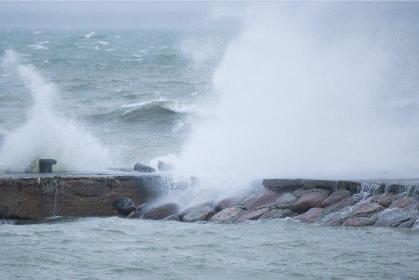 Ilmateenistus andis tormihoiatuse: tuul võib puhuda kuni 24 meetrit sekundis