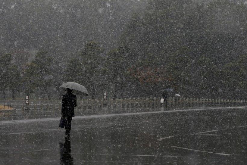 FOTOD | Tokyos polnud novembris lund sadanud juba 54 aastat... Kuni tänaseni