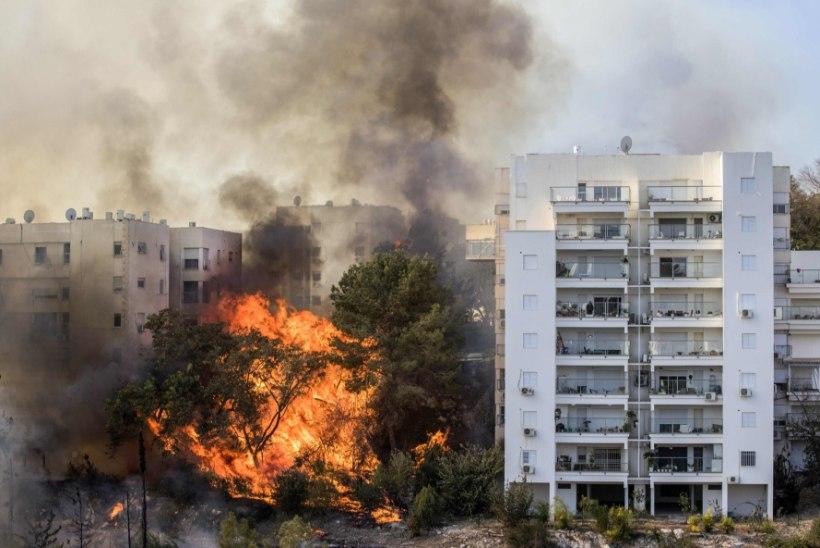FOTOD | Iisrael heitleb ulatusliku maastikupõlenguga, kahtlustatakse süütamist