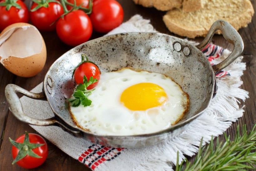 Kuidas vältida salmonelloosi haigestumist?