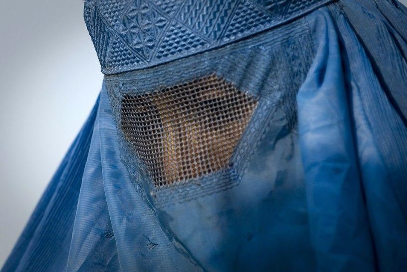 Holland keelustab burka kandmise