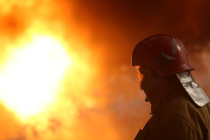 Põles Austria parlamendihoone