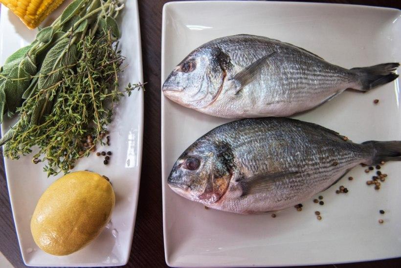 KALALE & APTEEKI! Kalaõli 12 kasulikku mõju sinu tervisele