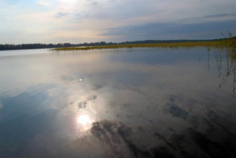 Soitsjärv näitas end taas hea linaskijärvena