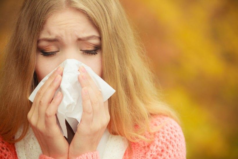 Hetkel põhjustavad viirusnakkusi peamiselt rinoviirused ja paragripp
