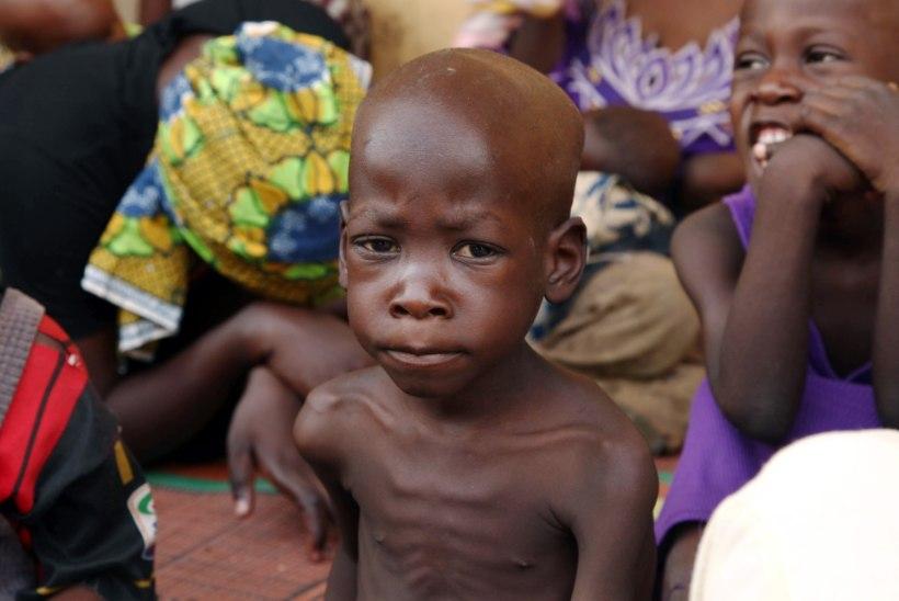 UNICEF: lähiajal võib nälga surra 80 000 Nigeeria last