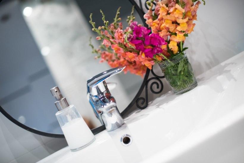 TÕHUSAD NIPID | Löö vannituba särama!