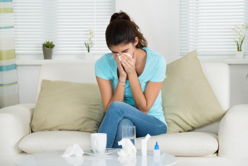 Grippi haigestumine suureneb iga päevaga: millal aru saada, et asi on tõsine?