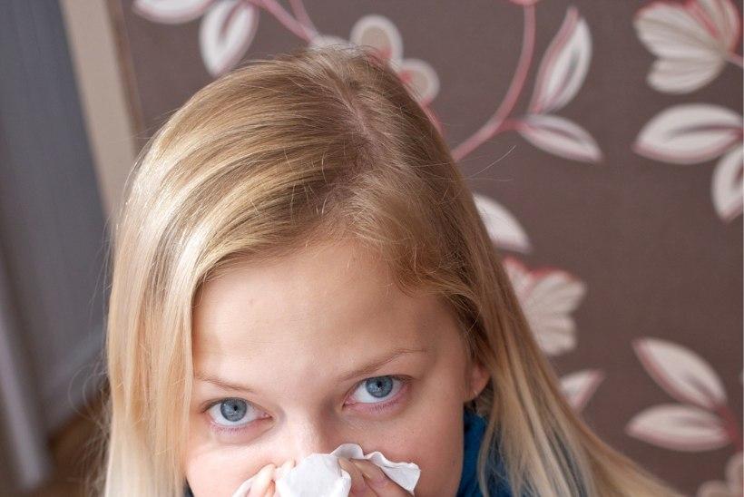 Sada palavikus ja nohus inimest kutsus kiirabi