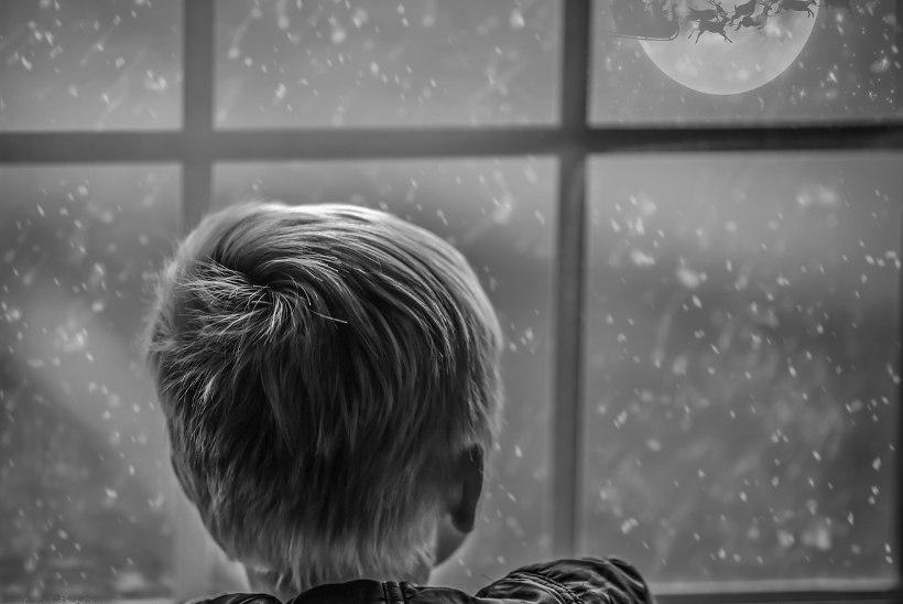 Mida teha, kui pühadehooaeg toob kaasa üksildustunde, kurbuse ja ärevuse?