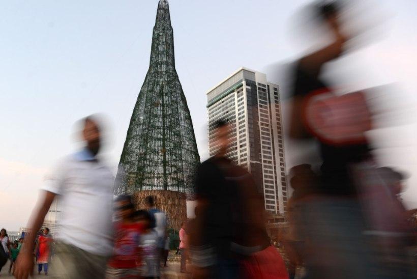 Kõige kõrgema jõulupuuga saab uhkustada troopiline Sri Lanka