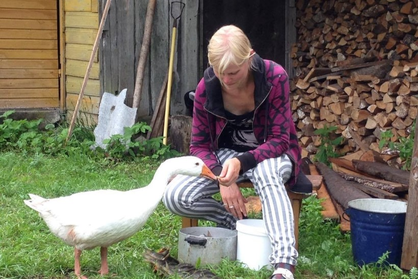 MÄLUMÄNG | Heidi Hanso pere ja muud loomad: kuidas neil talus läheb?
