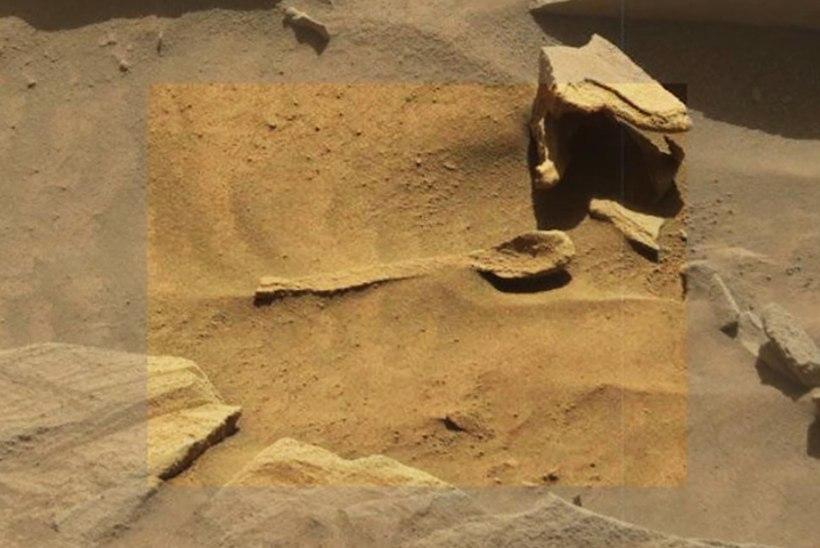ELUMÄRK? Ufokütt avastas Marsilt lusika