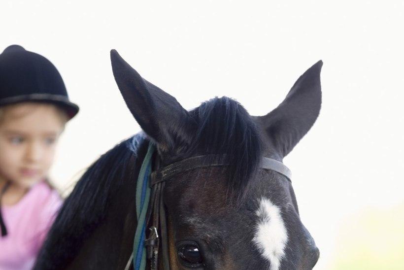 Lastefond toetab veel kolme lapse ratsutamisteraapiat