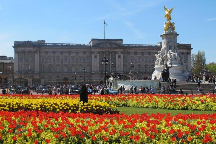 Buckinghami palee remont maksab 369 miljonit