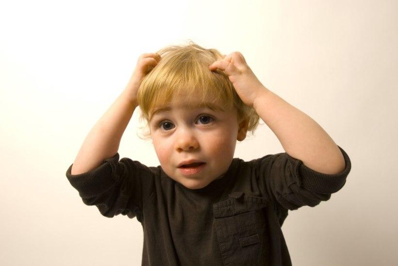 PÄEVAKORRAL AASTARINGSELT: Mida teha, kui koolis on täid?