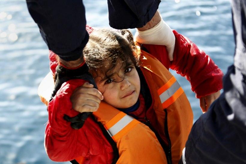 Põgenikevool Vahemerel jätkub